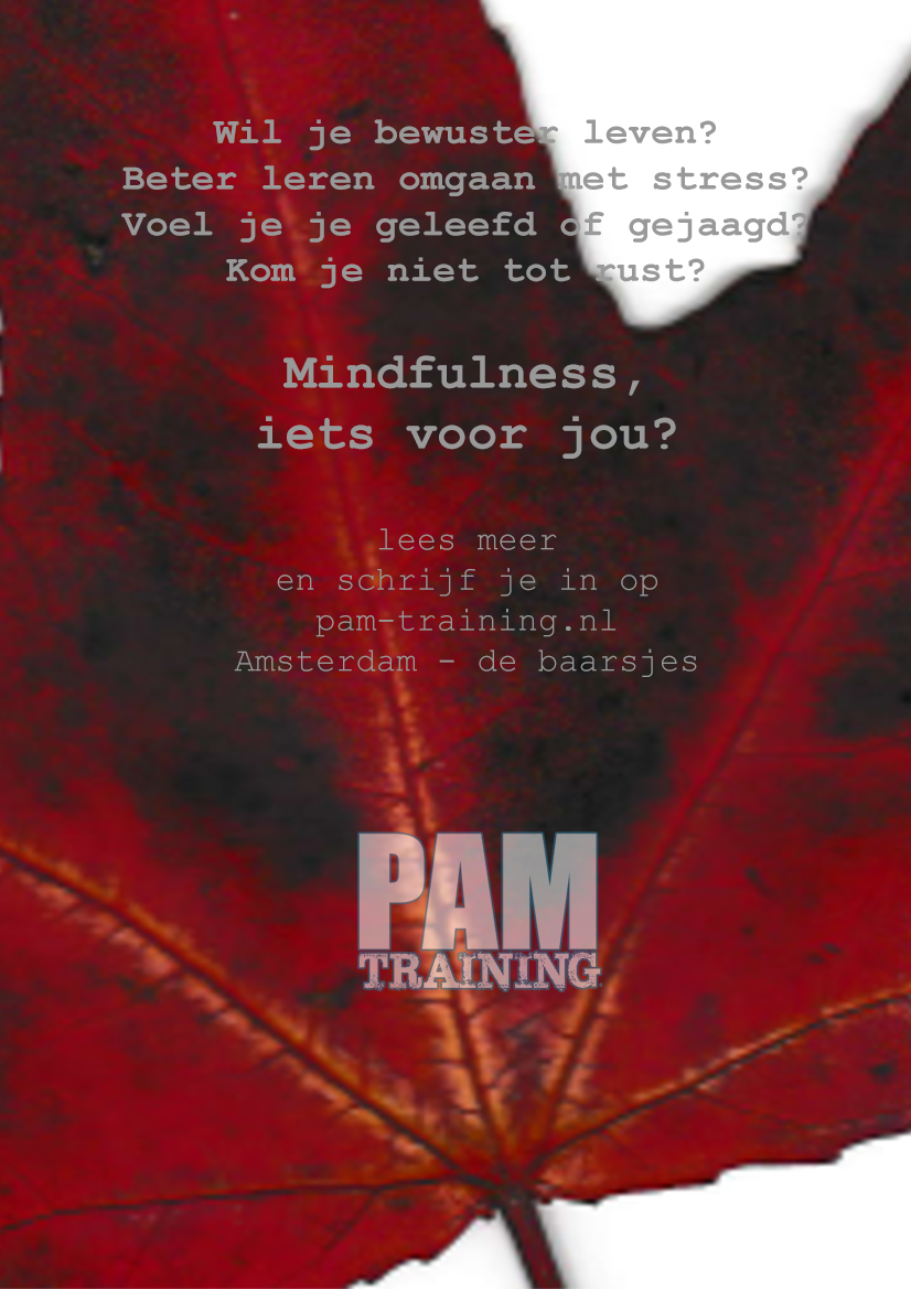 PAM-training flyer